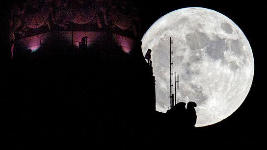 Une super Lune s'élève dans le ciel de Columbus, aux États-Unis, en novembre 2016.