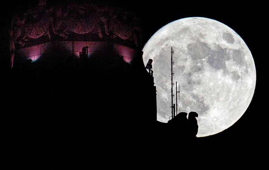 Comment observer la plus brillante super Lune de l'année ?