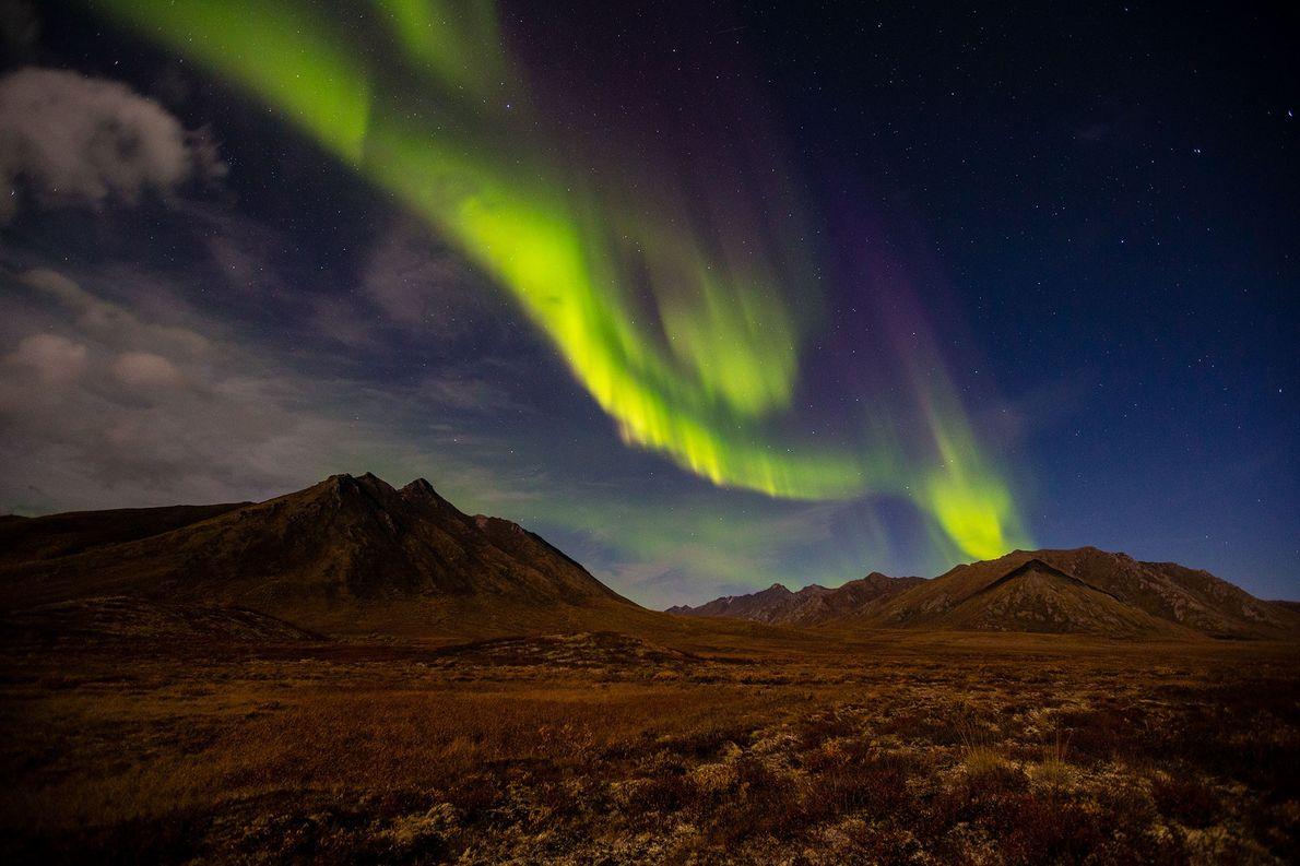 Une aurore boréale crée des lumières vacillantes qui illuminent le ciel canadien, à Yukon. Les aurores ...