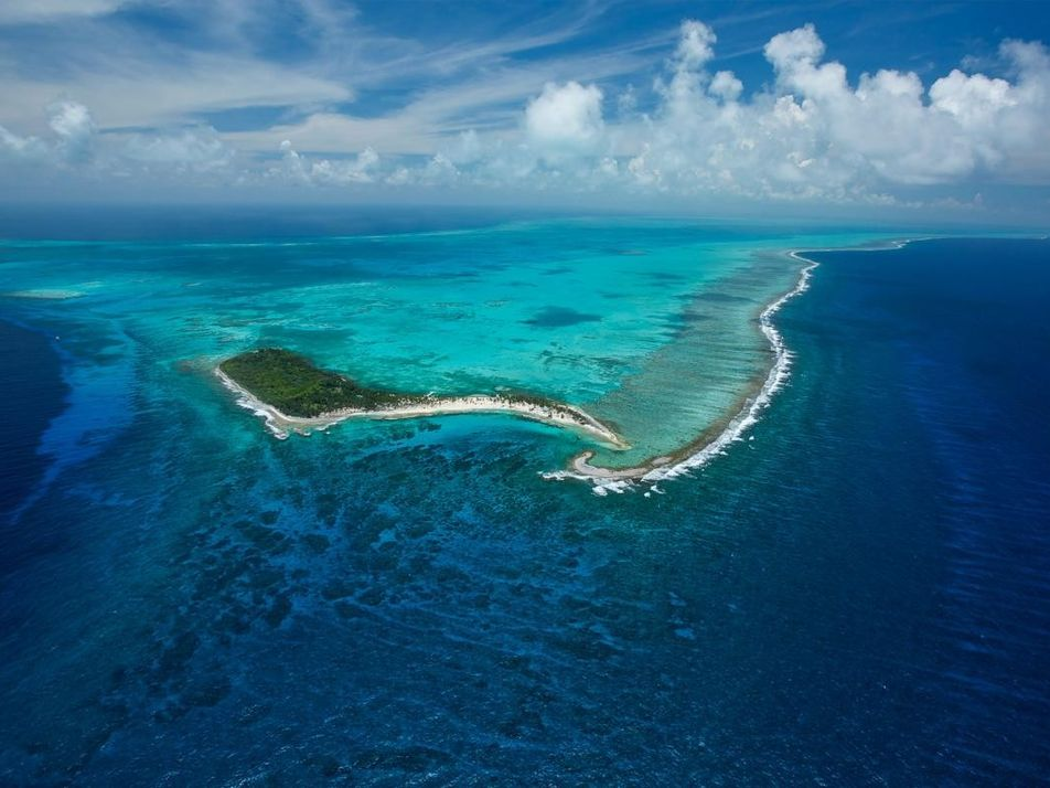 Plus de 86 % des océans seraient impactés par l'activité humaine