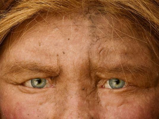 La lignée de l'Homme de Denisova pourrait représenter trois espèces humaines