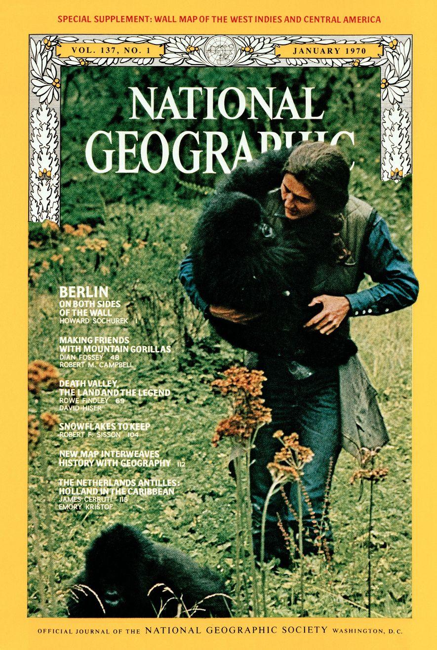 Le récit à la première personne de Dian Fossey sur sa vie au milieu des gorilles ...
