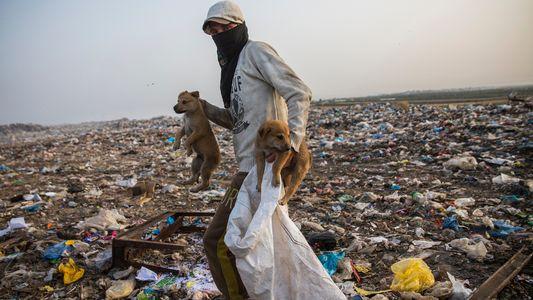 À Gaza, le rapport ambivalent au plastique