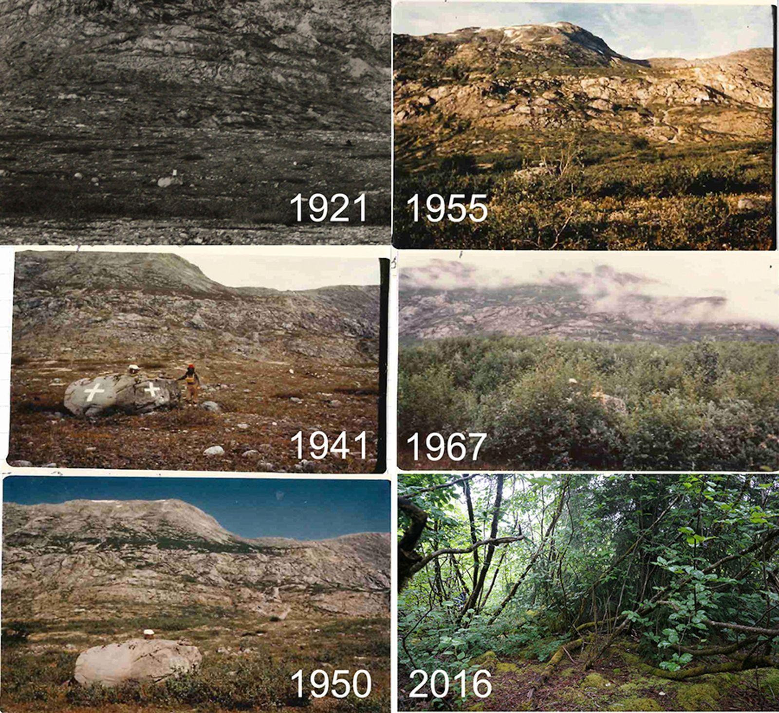 Ces images illustrent la manière dont des parcelles précises ont considérablement évolué au fil des décennies.