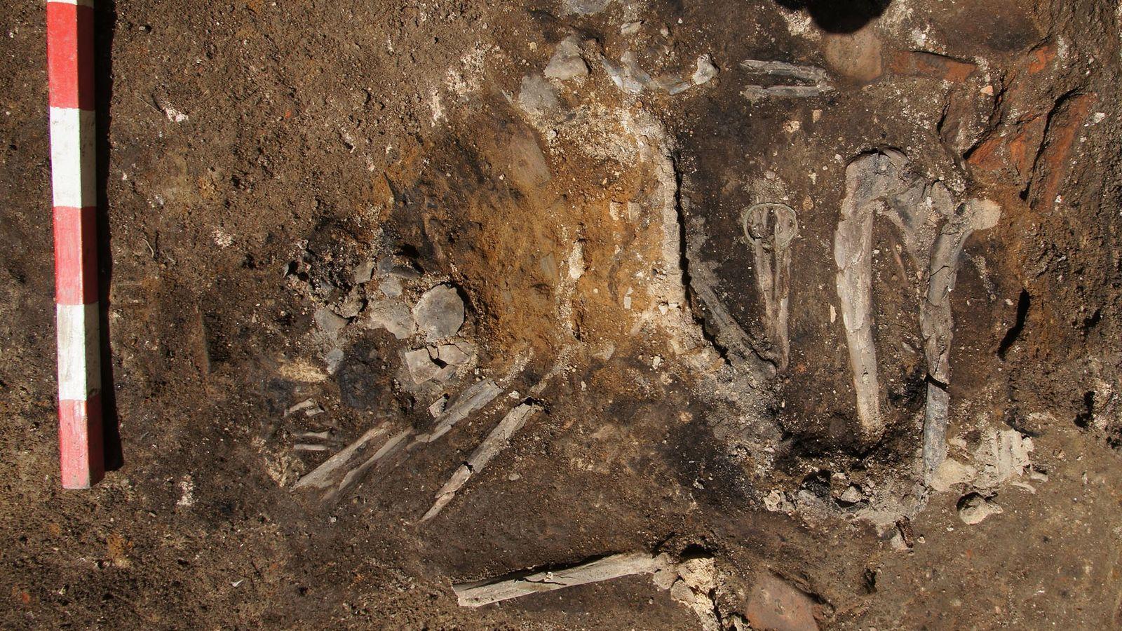 Le squelette de la femme adulte a été mis au jour dans une couche stratigraphique datant ...