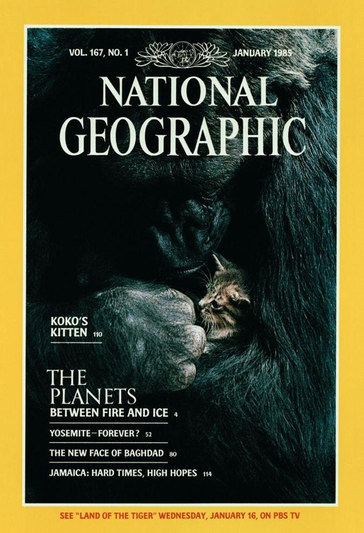 Photo de couverture du National Geographic réalisée par Ronald Cohn.