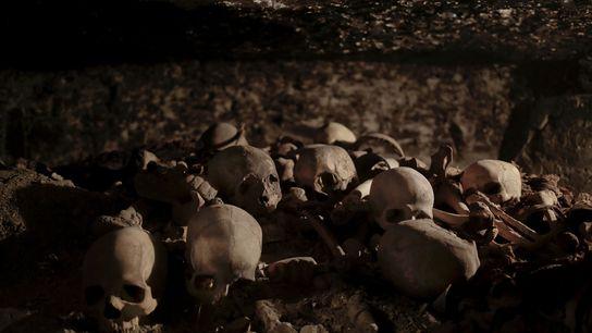 Dans un puits funéraire, les crânes découverts dans le tombeau datant de l'époque du Nouvel empire ...