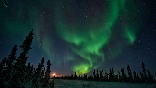 Il y a 42 000 ans, une excursion du champ magnétique a bouleversé la vie sur ...