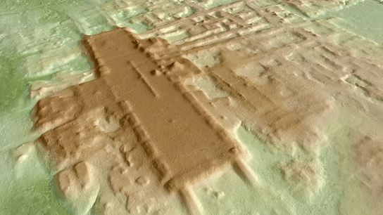 Une image 3D de la plate-forme monumentale d'Aguada Fénix (en brun foncé). La structure, construite il y ...