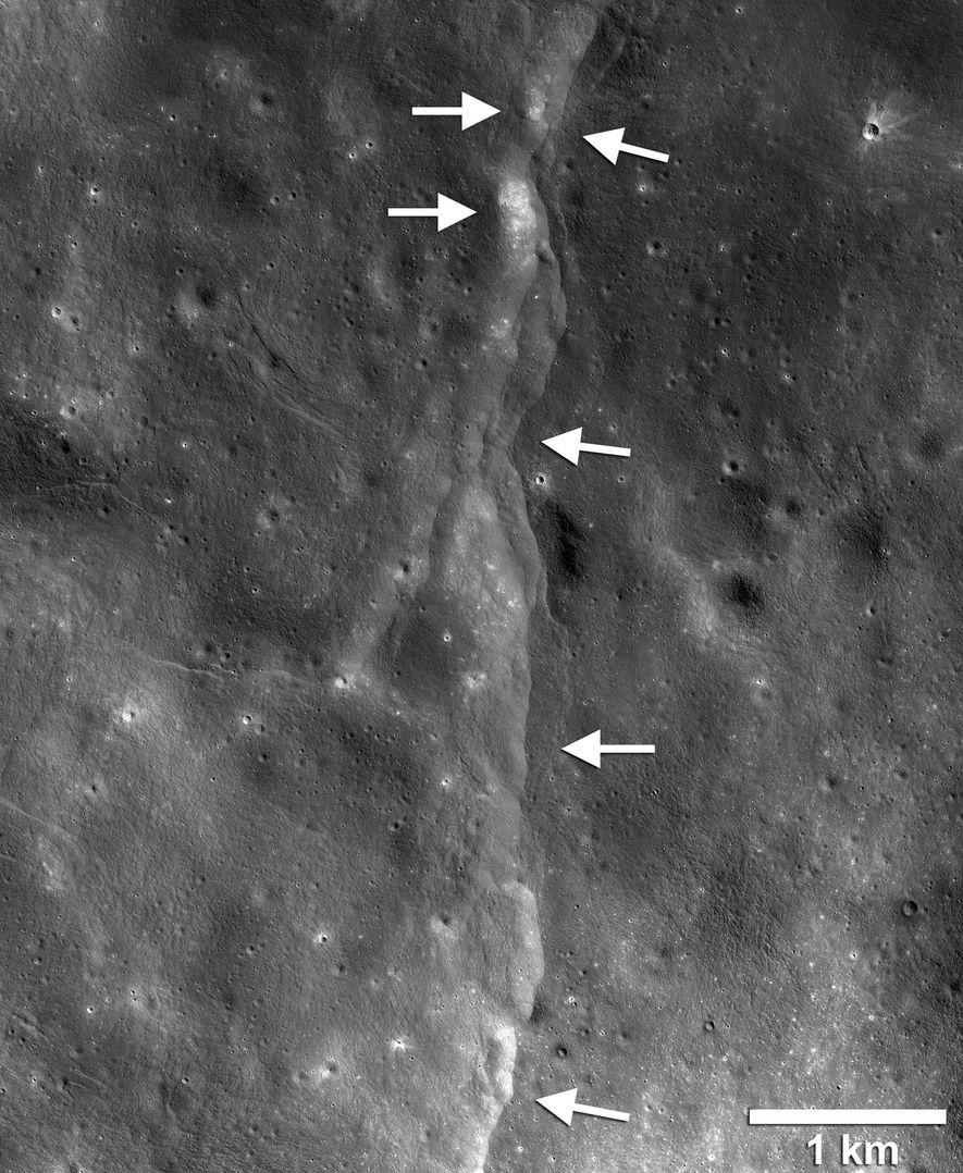 Cette ShakeMap sismique créée à partir d'images de la NASA montre les mouvements attendus d'un tremblement de lune superficiel au niveau d'un chevauchement associé à l'escarpement de Mandel'shtam sur la surface lunaire.