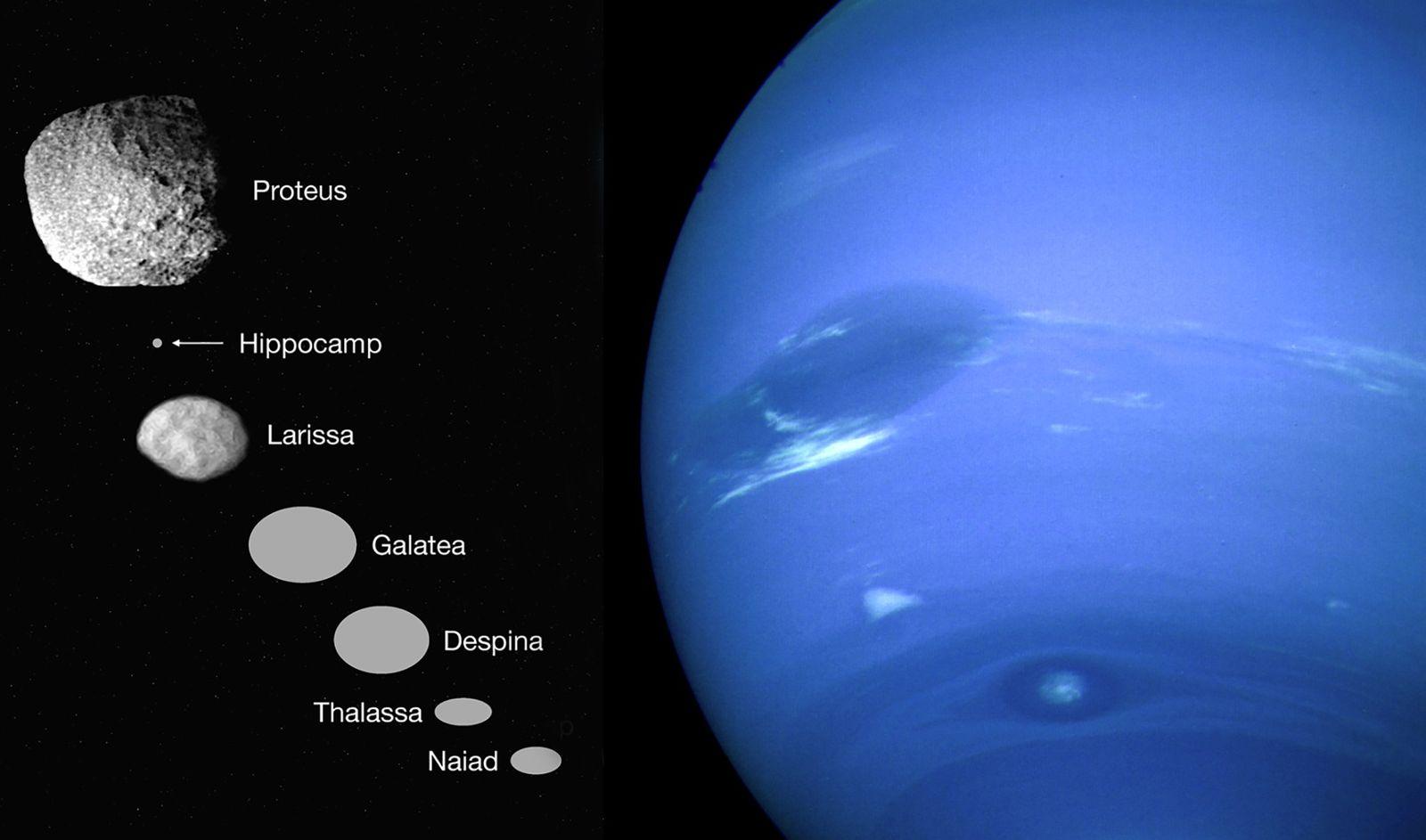 Ce que nous savons d'Hippocampe, la nouvelle lune de Neptune