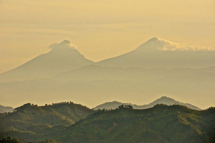 Le mont Mikeno (à gauche) et le mont Karisimbi qui culmine à plus de 4 500 ...