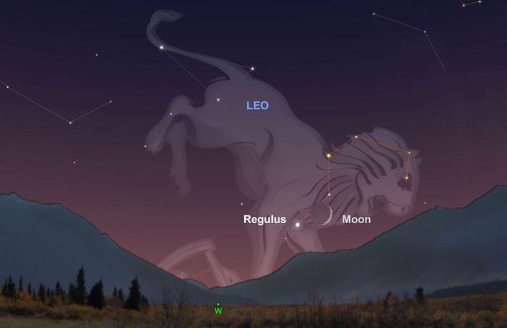 Cherchez le croissant de lune qui guidera vos yeux vers l'étoile Regulus près de l'horizon sud-ouest ...