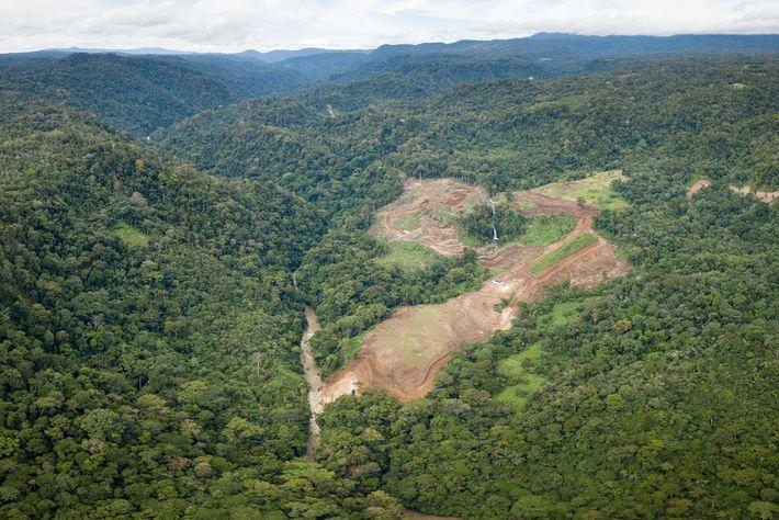 Le défrichement a déjà commencé pour le barrage et la centrale hydroélectrique financés par des entreprises ...
