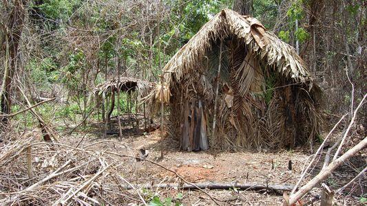 Plongée au cœur des tribus isolées du Brésil