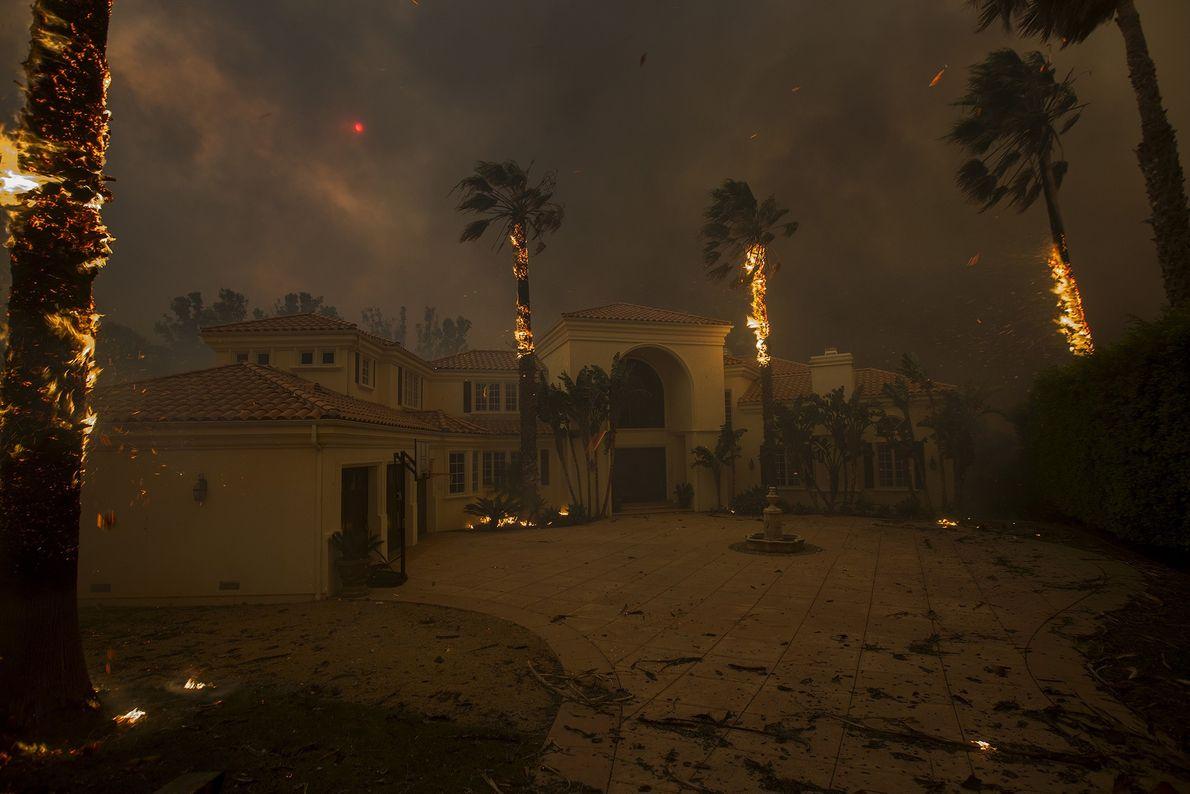 Des cendres tombent des palmiers en feu, le soleil est caché par la fumée, tandis que ...
