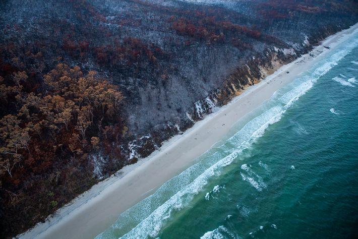 Les incendies ont ravagé l'île jusqu'à ses plages de sable blanc immaculées. Face au nuage de ...
