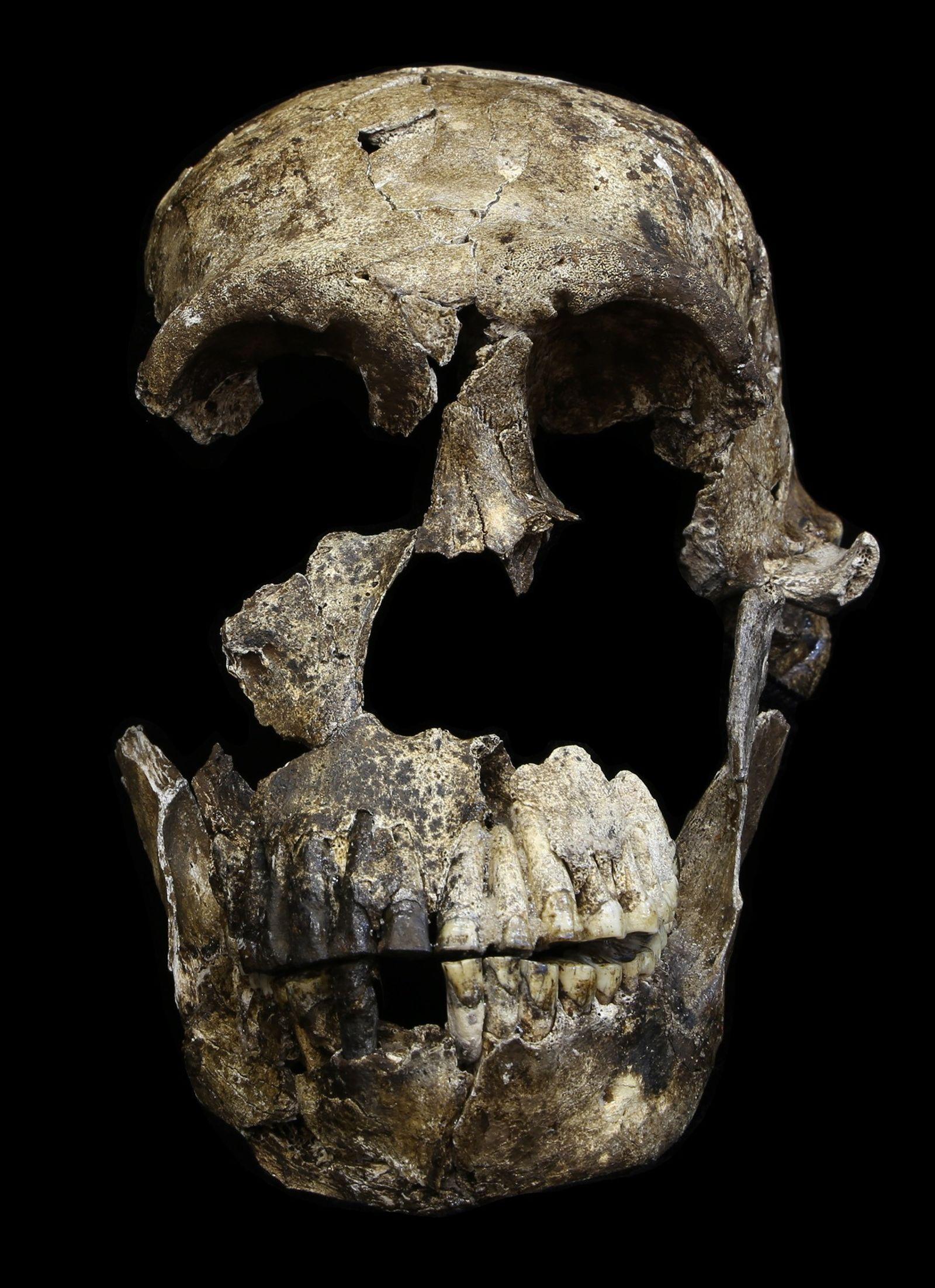 Les plus anciennes preuves de la présence humaine dans le bassin du Congo enfin datées