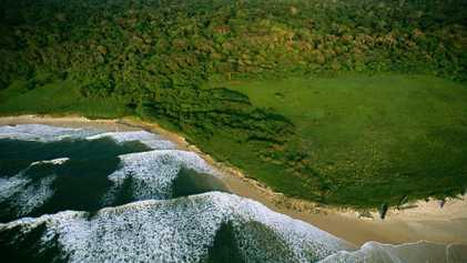 Le Gabon crée la plus grande réserve océanique d'Afrique pour protéger la biodiversité marine
