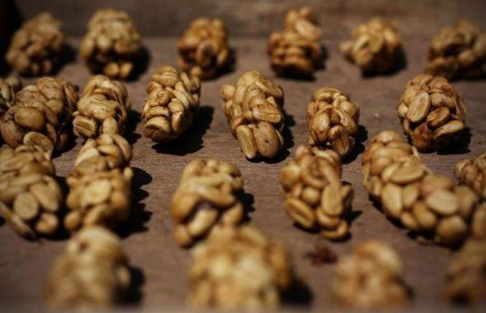 Les excréments de civettes, parsemés de graines de café partiellement digérées, étaient auparavant recherchés dans la ...