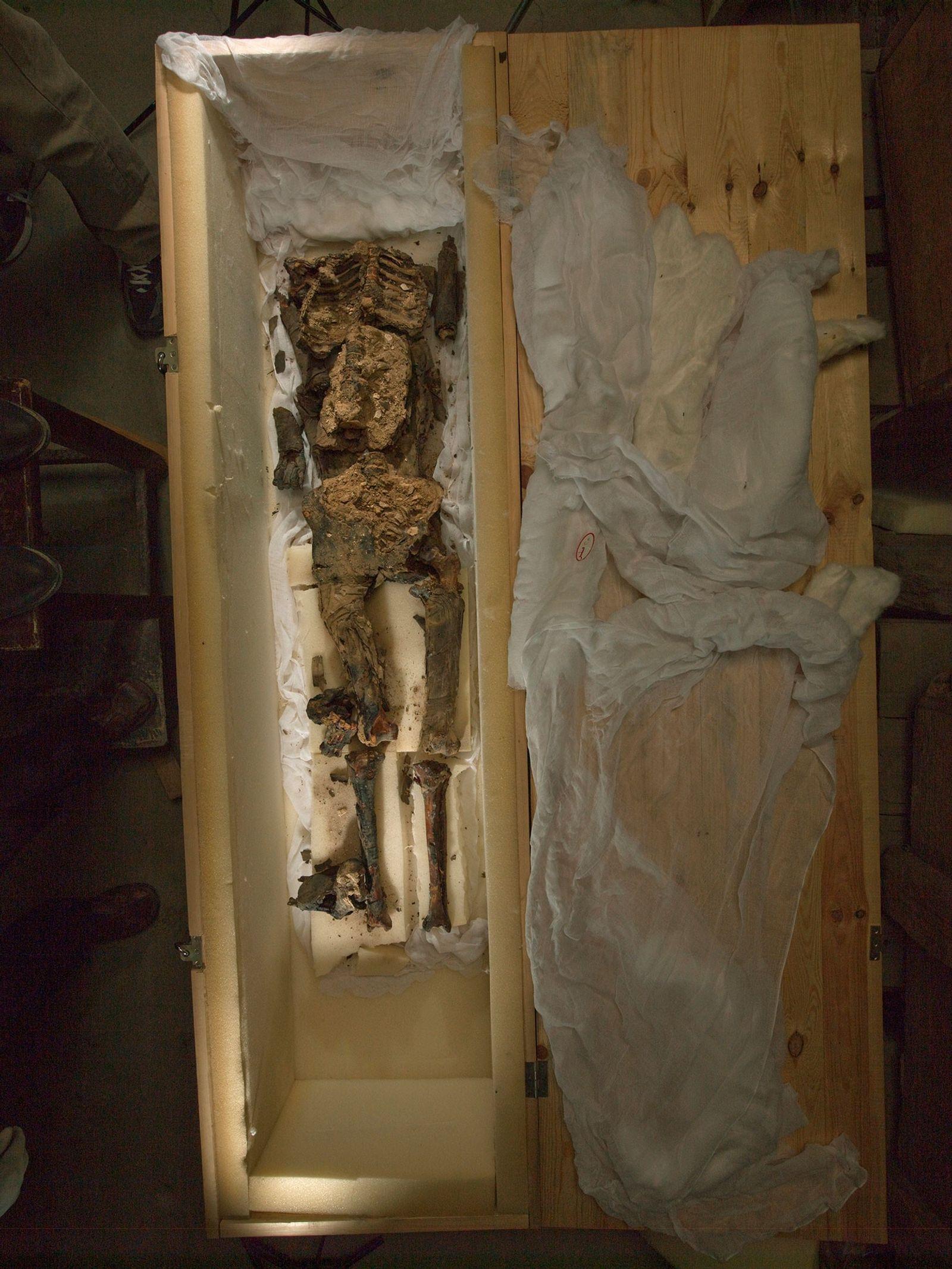 Album de famille : le Roi Toutankhamon, la Reine Néfertiti et un arbre généalogique bien complexe