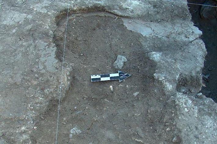 Une fosse commune sur le site de Teposcolula-Yucundaa Grand Plaza, avant excavation.
