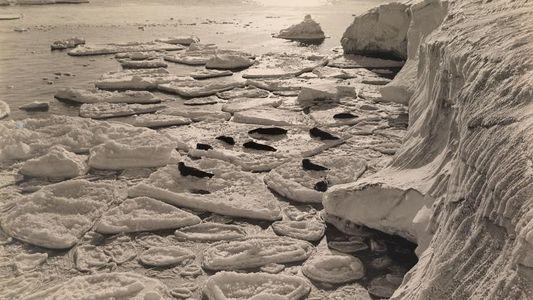 Antarctique : près de la Barrière de Ross, la glace cristallise mais ne fond pas