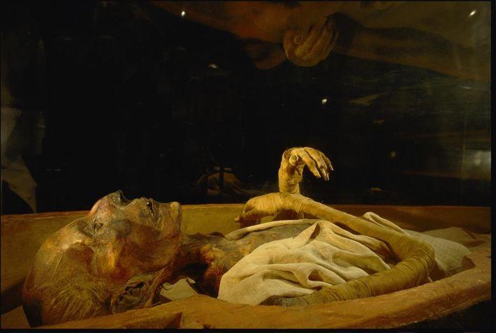 Les visiteurs peuvent admirer les restes momifiés de Ramsès II au Musée égyptien du Caire. Le ...