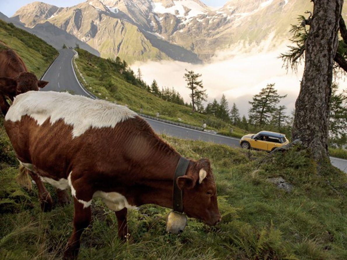 Autriche: Aire de jeux verticale