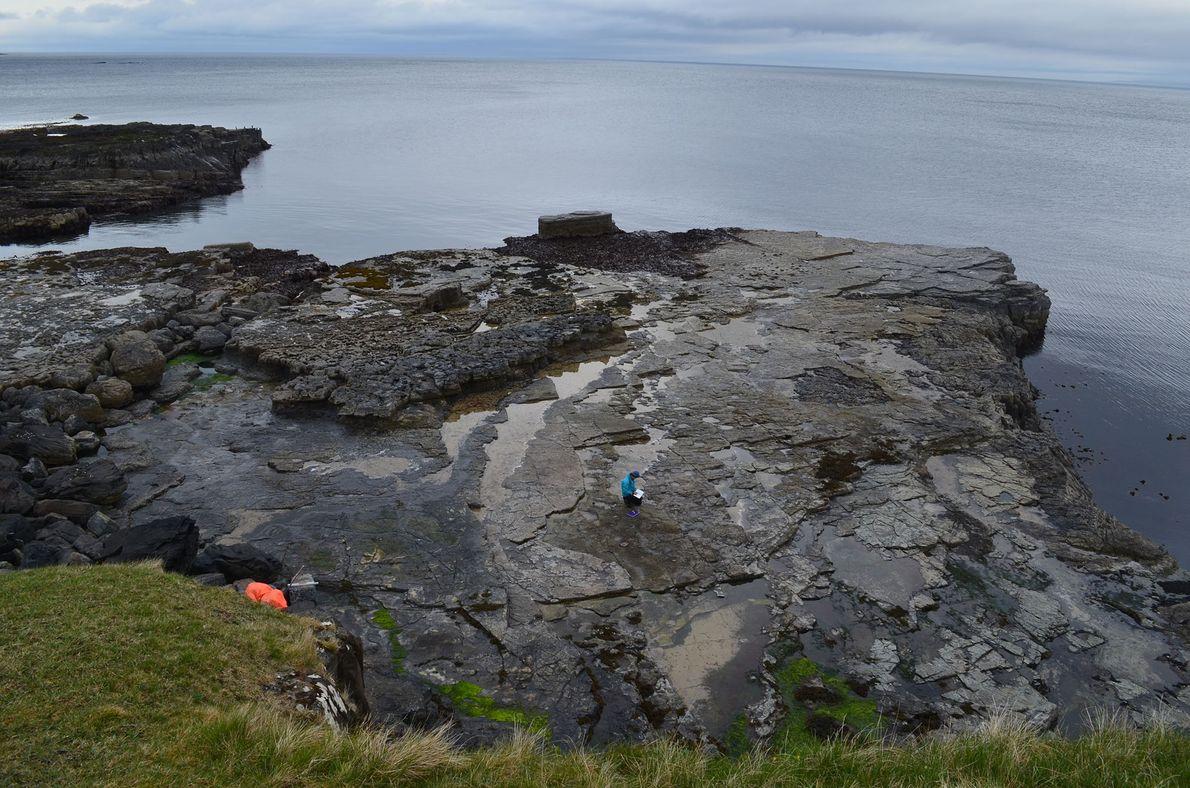 Vue d'ensemble prise depuis la falaise surplombant la plateforme principale où ont été mises au jour ...