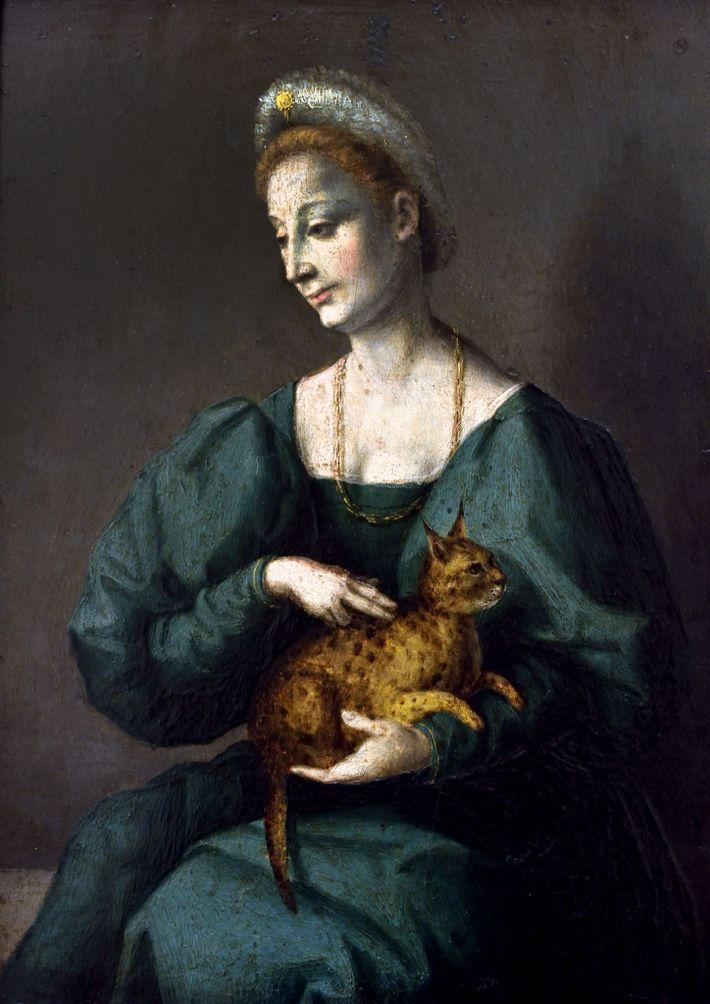 Sur cette peinture datant de la Renaissance italienne, une femme porte un chat décrit comme une ...