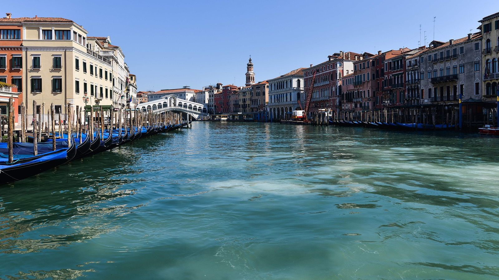 Face à la baisse de fréquentation des canaux de Venise provoquée par la quarantaine, des publications ...