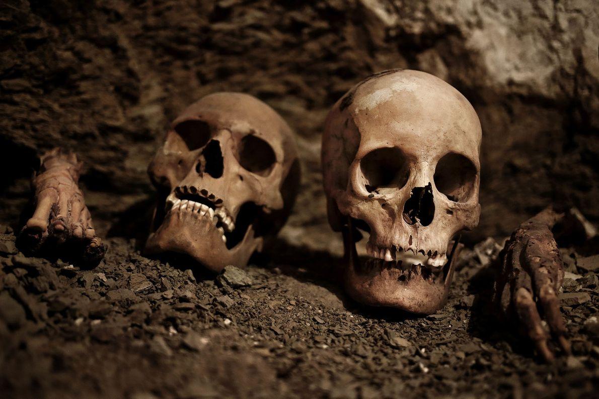 Le tombeau, vieux de 3 500 ans, abritait des crânes, des momies, des objets en terre ...