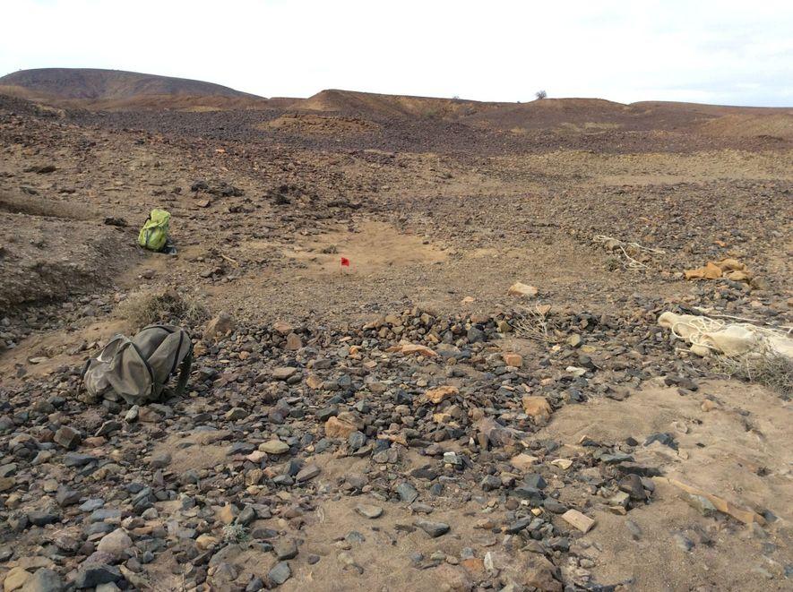 Le crâne a été découvert à Napudet, un site situé à l'ouest du lac Turkana, au Kenya. Un drapeau rouge signale l'endroit où le fossile a été trouvé.