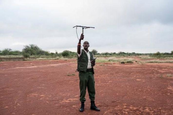 David Daballen, qui travaille avec Save the Elephants, teste le signal du collier d'un éléphant dans ...