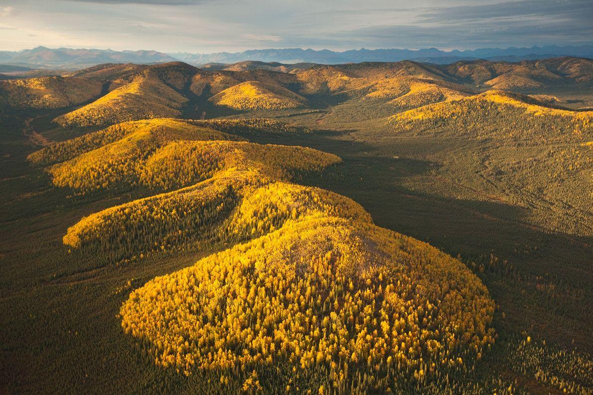 Malgré son statut de parc national le plus au nord de l'Amérique, Gates of the Arctic …