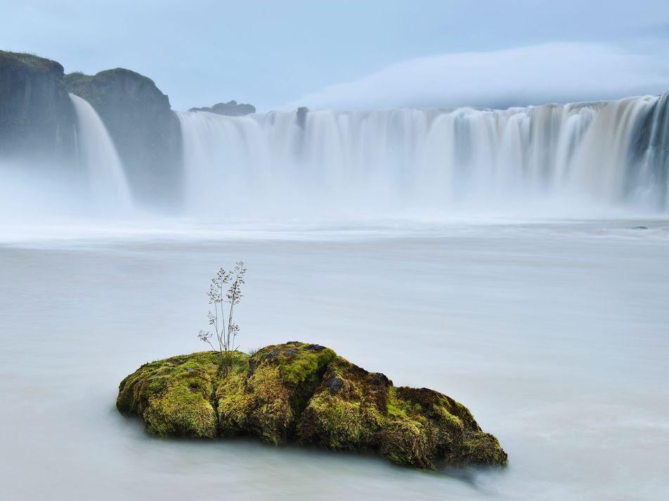 Quand la photographie sublime la nature