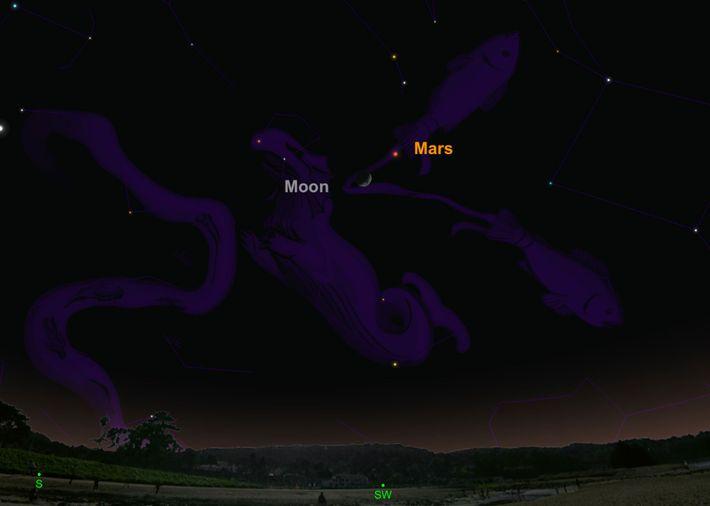 Recherchez la planète rouge perchée près du croissant de lune le 10 février.