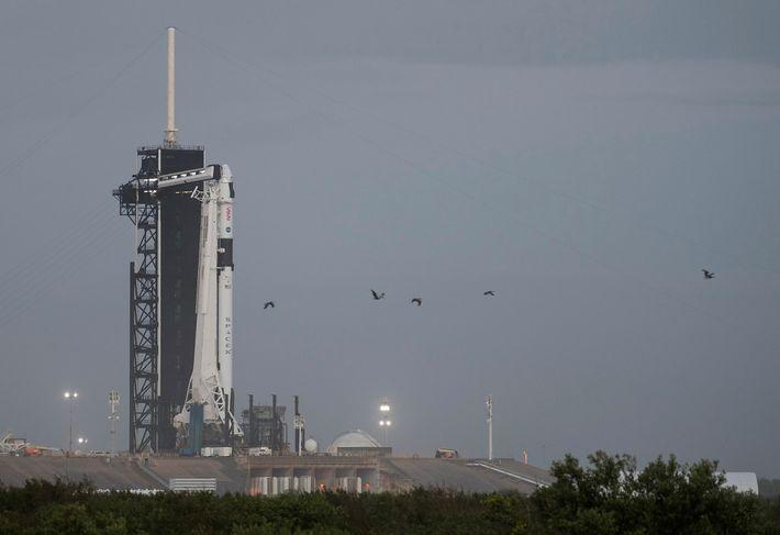 La fusée Falcon 9 de SpaceX, dotée du vaisseau spatial Crew Dragon, est photographiée le mardi 10 novembre 2020 sur la ...