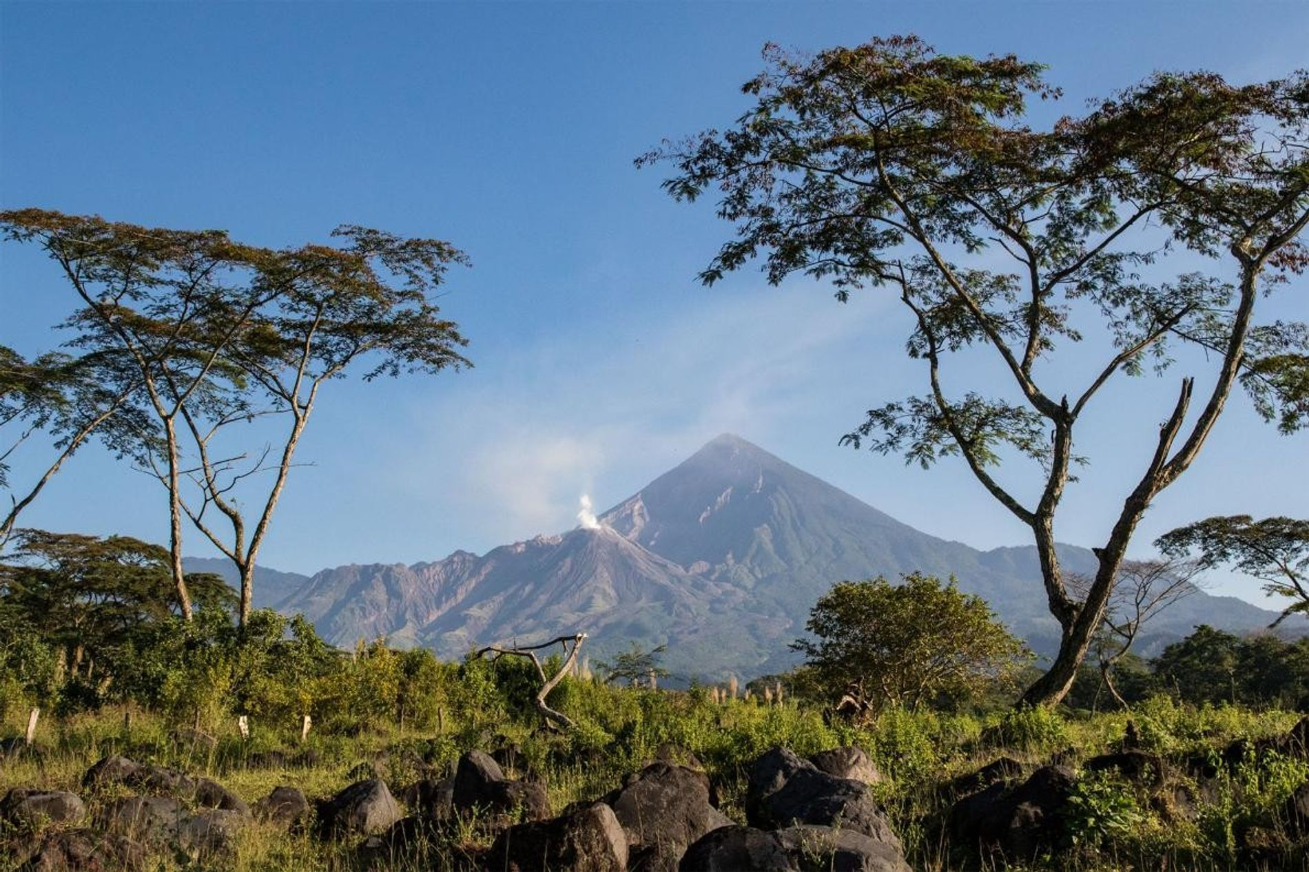 Sciences : comprendre les éruptions volcaniques pour mieux protéger les populations