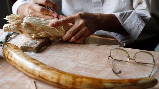 Un travailleur à Guangzhou en 2009 sculpte l'ivoire.