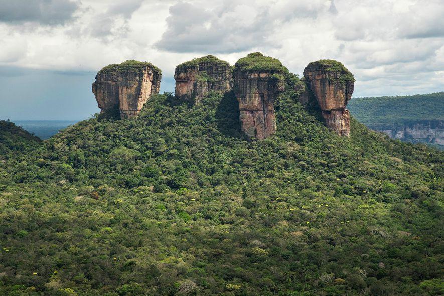Le parc national de la Serranía de Chiribiquete, qui abrite la plus grande aire de forêt tropicale protégée au monde, a été agrandi de plus d'un million d'hectares en 2018.