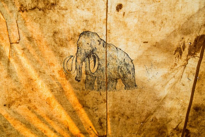 Représentation de mammouth dans une tente.