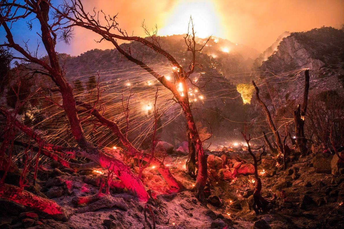 Dans la forêt nationale de San Bernardino en Californie, l'incendie Valley faisait rage près de Forest ...