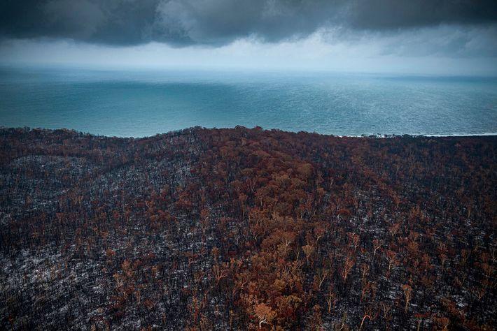 Les précipitations plus faibles qu'à l'accoutumée ont créé des conditions de sécheresses exacerbées par la chaleur : ...