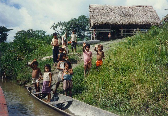 Photo d'enfants d'Amazonie