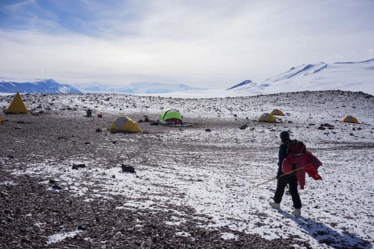 La scientifique Patricia Ryberg retourne au camp de Graphite Peak après une journée de collecte de ...