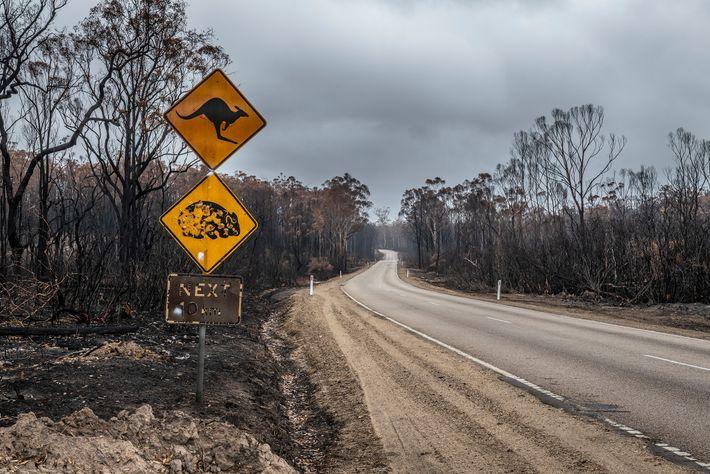 Un panneau routier au beau milieu du délabrement dans cette région de l'État de Victoria fin ...