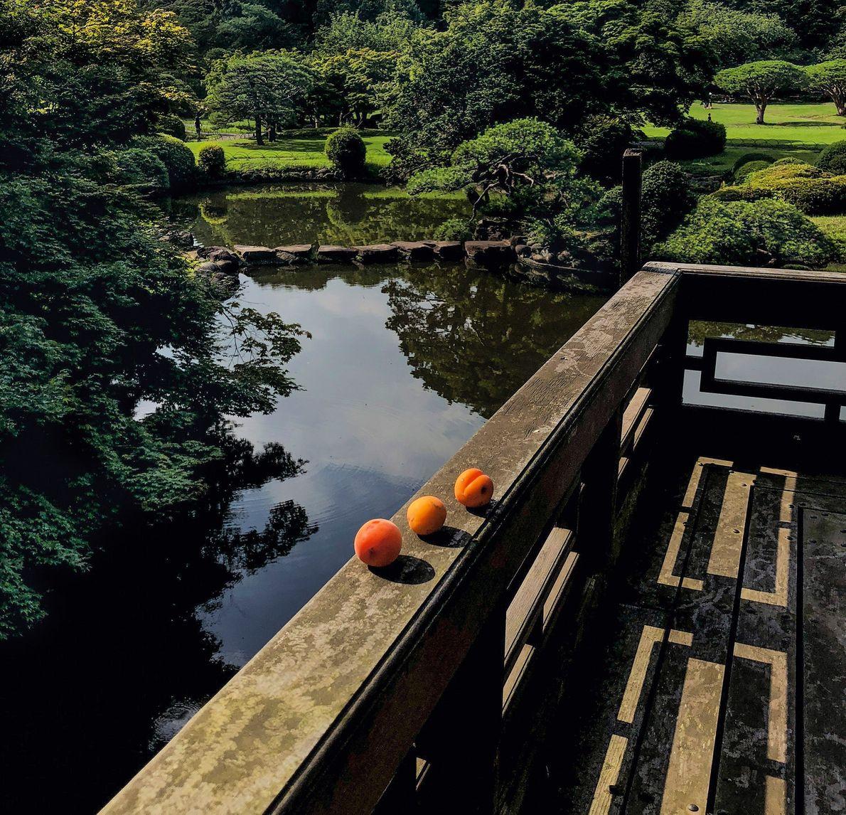 Une offrande d'abricots repose sur la balustrade d'un pavillon du jardin national de Shinjuku Gyoen à ...