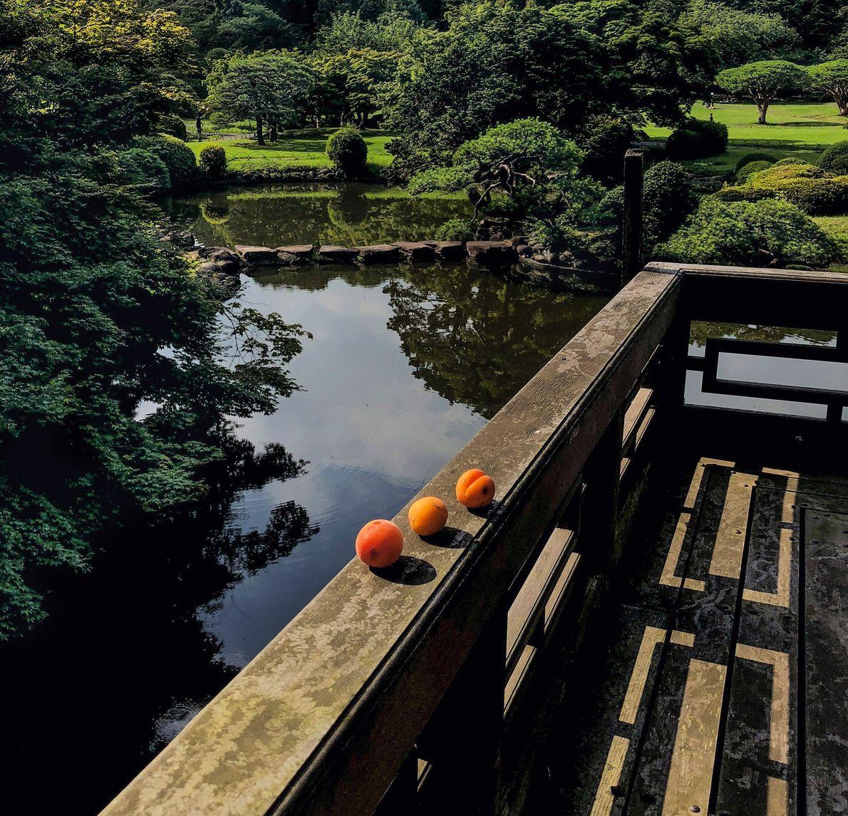 Une offrande d'abricots repose sur la balustrade d'un pavillon du jardin national de Shinjuku Gyoen à …
